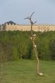 Penone au Château de Versailles, Idee di pietra ciliegio