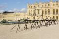 Penone au Château de Versailles, Spazio di luce | Espace de lumière