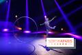 Festival du Cirque de Demain 2015