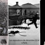 expositions de Décembre 2014 à Paris