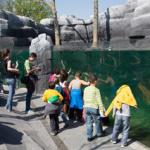 Le Zoo de Vincennes pour la Toussaint