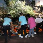 La chasse aux oeufs... de raies à l'Aquarium de Paris