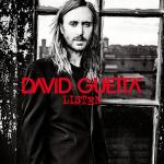 David Guetta à Paris Bercy en décembre 2015
