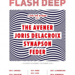 Tournée Flash Deep au Zénith de Paris en novembre 2015