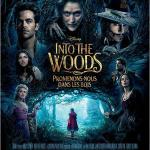 Into the Woods, Promenons-nous dans les bois : critique et bande-annonce
