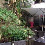 Le jardin de Noura Montparnasse : soleil et mezzés en folie !