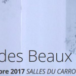 Le Salon des Beaux Arts de Paris 2017 au Carrousel du Louvre