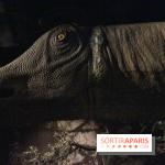 Dinosaure, la vie en grand au Muséum