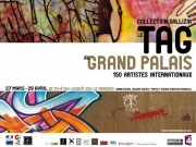 TAG, Grand Palais, Exposition