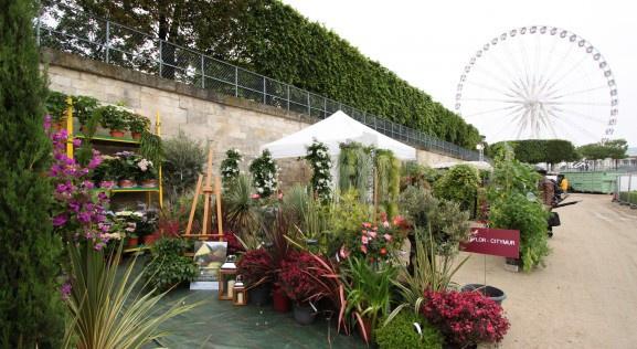 Nos bons plans spectacle th tre for Jardin jardin aux tuileries