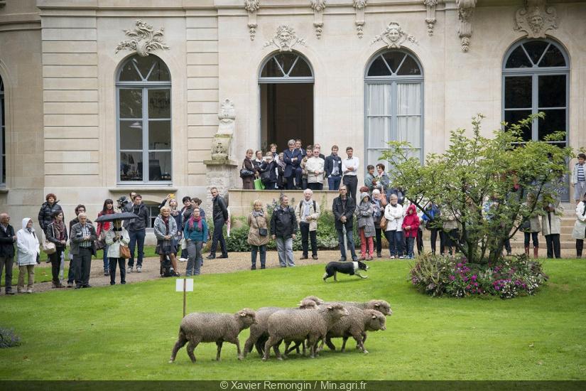 journ es du patrimoine 2016 un salon de l 39 agriculture au