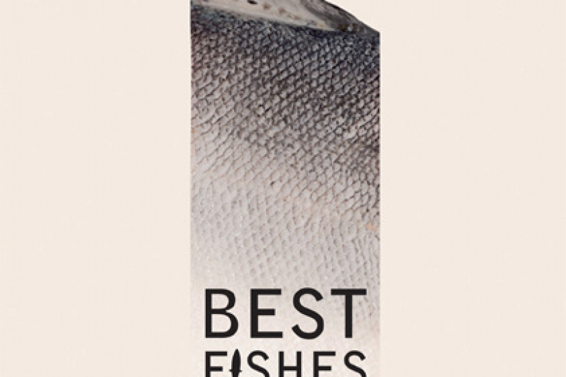 best fishes à la cartonnerie