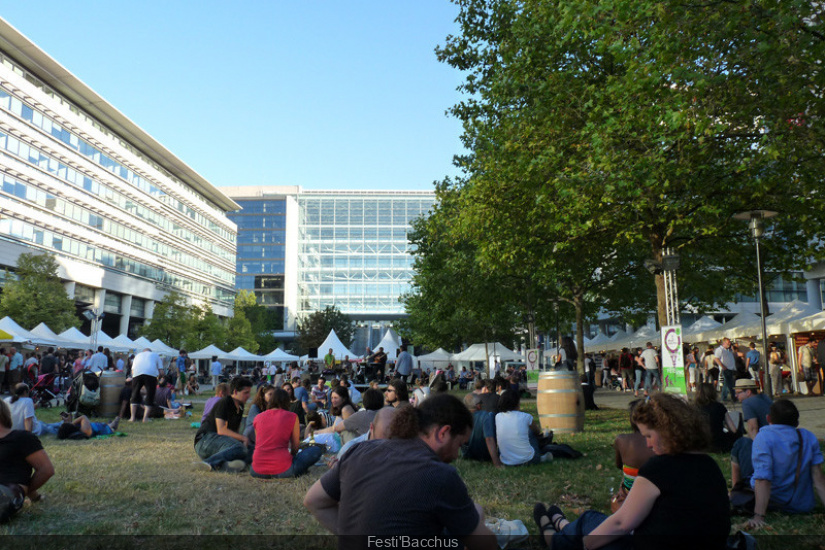 Festi 39 bacchus 2013 bercy le salon des vins en plein air for Salon des vins paris