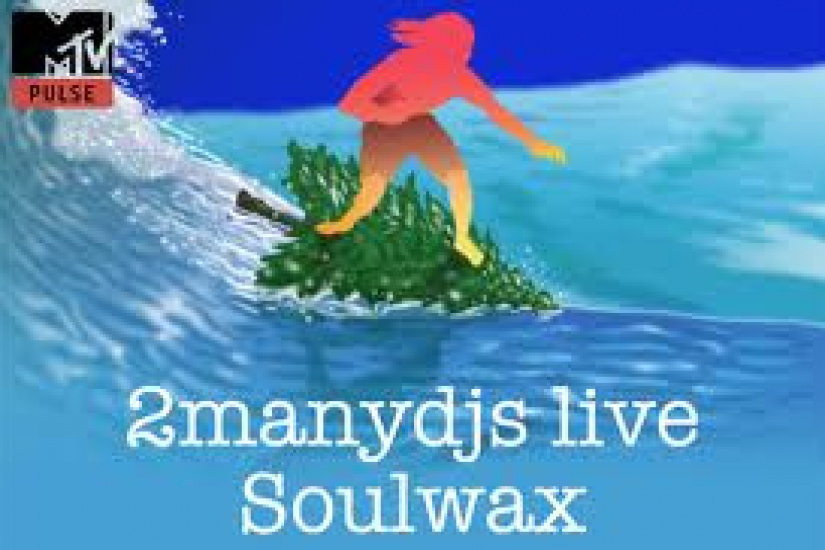 Soulwaxmas (2manydjs + Soulwax + Guests)