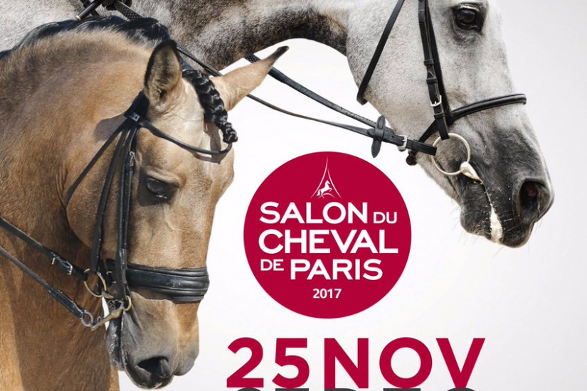 Salon du cheval de paris 2017 for Salon du chiot reze 2017