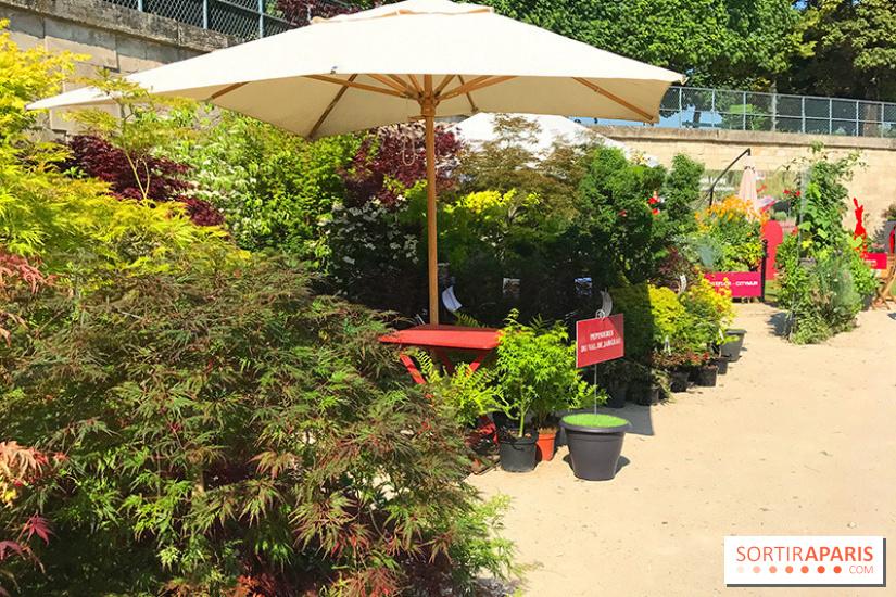 Jardins jardin 2018 aux tuileries for Le jardin aux epilobes