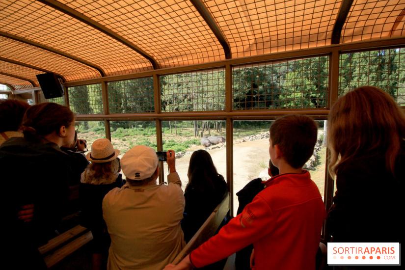 Zoo de thoiry et ses nouveaut s 2018 for Visite dans le 78
