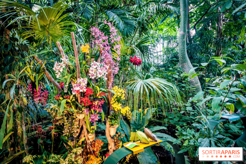 Nos bons plans spectacle th tre for Plantes et jardins serres