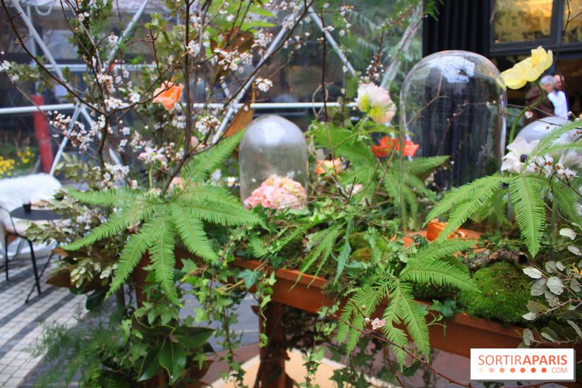 bulle de jardin awesome cool bois photo abri de jardin. Black Bedroom Furniture Sets. Home Design Ideas
