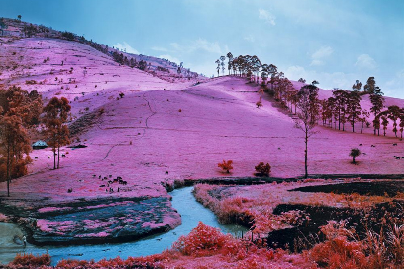 Richard Mosse : Infra