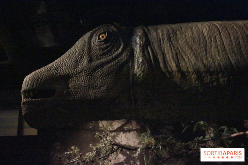 Dinosaure la vie en grand au mus um du jardin des plantes - Jardin des plantes paris dinosaures ...