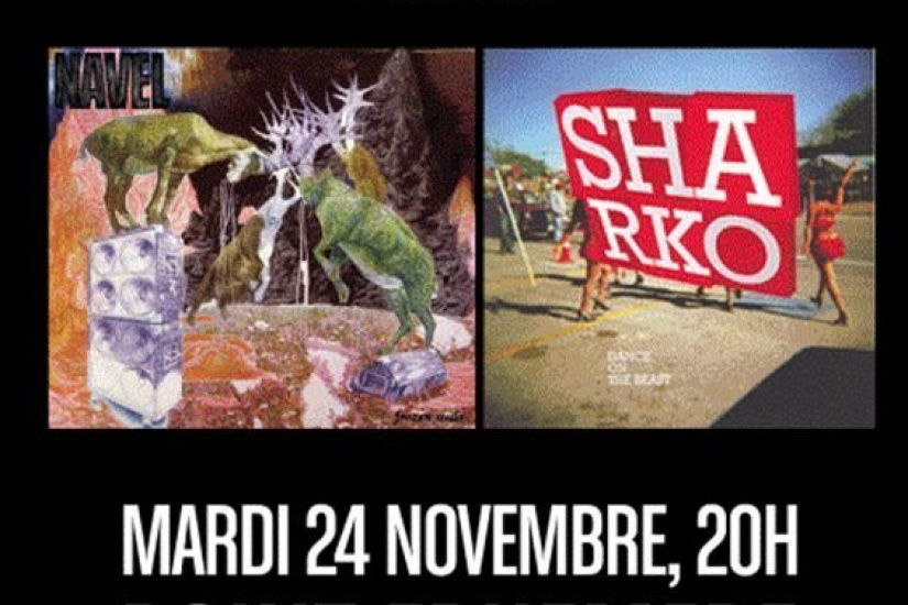 Navel, Sharko, Concerts, Paris, Point Ephémère