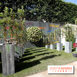 Photo 4 jardins jardin 2015 aux tuileries for Jardins jardin aux tuileries