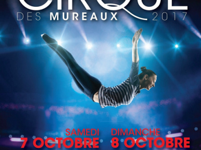 Festival international du cirque des Mureaux 2017