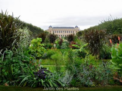 Rendez vous aux jardins 2015 au jardin des plantes for Au jardin des plantes poem