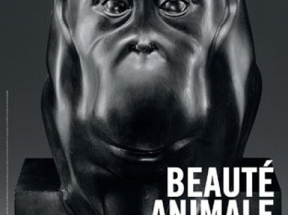 exposition beauté animale au grand palais