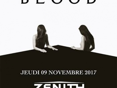 Royal Blood en concert au Zénith de Paris en novembre 2017