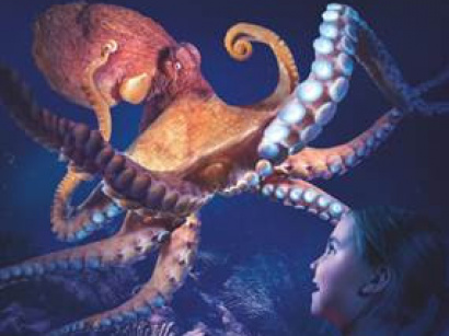 Pouples Fiction, la nouvelle exposition de Sea Life