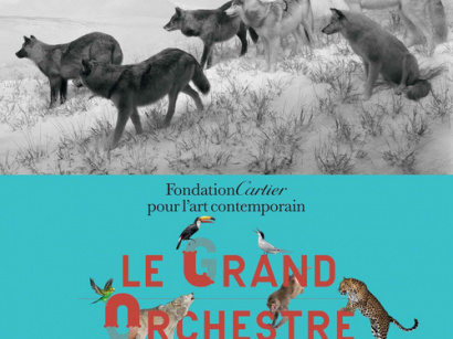 Le Grand Orchestre des animaux, l'expo à la Fondation Cartier