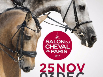 Le carrousel des m tiers d art et de cr ation 2018 for Salon de paris 2017