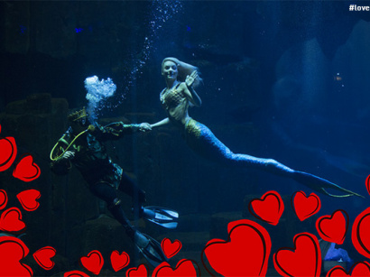 Saint-Valentin 2018 à l'Aquarium de Paris