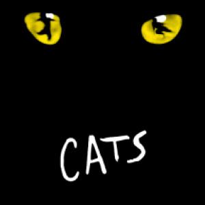 cats mogador