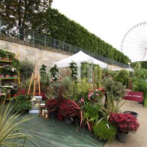 Balades paris actu agenda bons plans guide des for Jardin aux tuileries