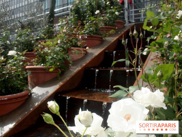 Album Photos Jardin Dorient A Linstitut Du Monde Arabe - Jardin-arabe