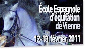 Ecole Equitation