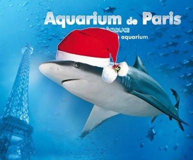 aquarium de paris, cinéaqua