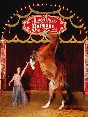 Cirque Diana Moréno Bormann