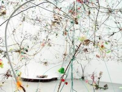 Programme Tropico-Végétal Gerda Steiner et Jörg Lenzlinger, Grottes sauvages sur forêt cérébrale civilisée