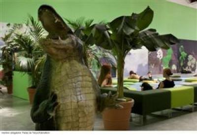 Programme Tropico-Végétal