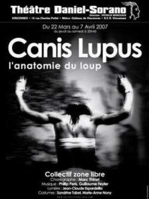 Canis Lupus L anatomie du loup
