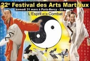 22e Festival des Arts Martiaux