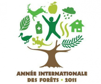 Arbres et Forêts, Jardin des Plantes, exposition, année internationale des forêts