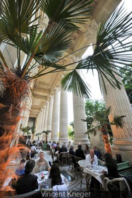 La terrasse du Mini Palais se met à l'heure des thés