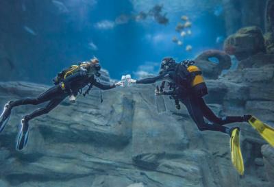 Le Bal du Titanic à l'Aquarium de Paris