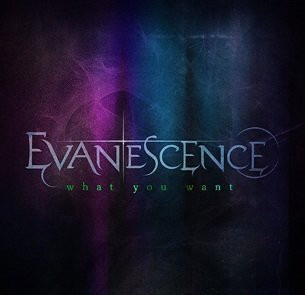 Evanescence, What You Want