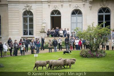 Journées patrimoine Ministère Agriculture